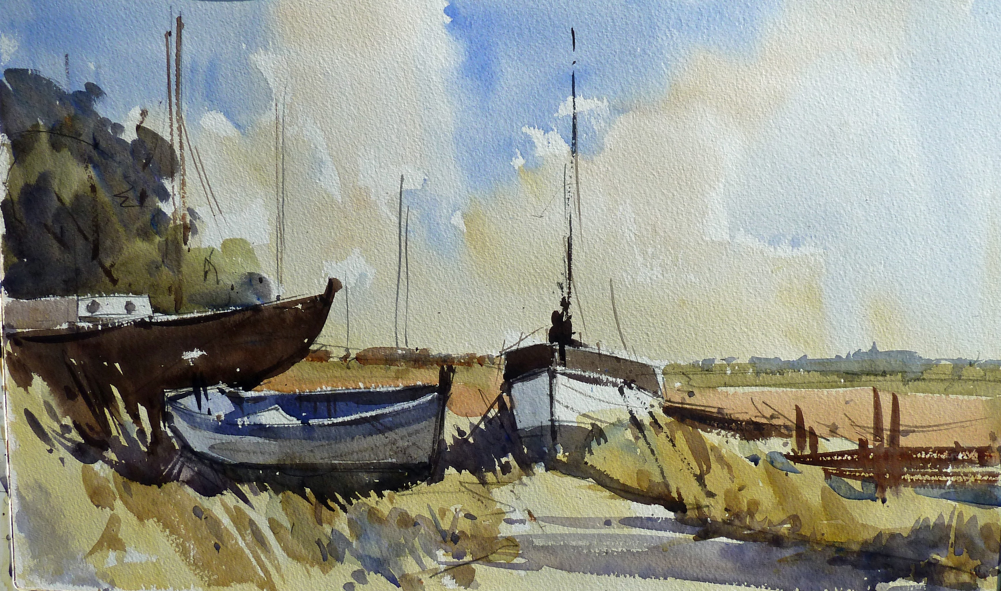Winning Watercolours Dvd With Steve Hall Instructional